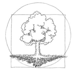 na-strazy-drzew